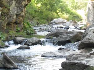 Cantara Loop - Sacramento River