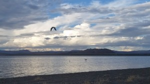 Pyramid Lake - Listening