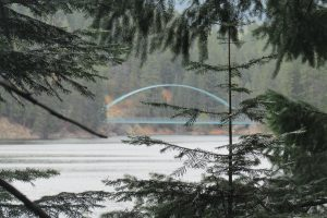 Lake Siskiyou bridge through the pines